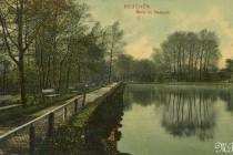 Bt  16  1908 Fragment parku 4-12-1908 awers